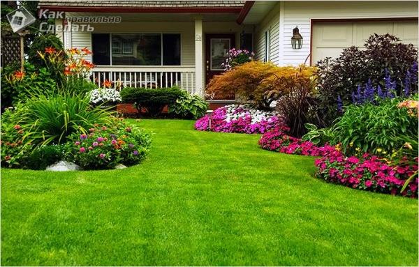 Как сделать газон на даче своими руками (+фото)