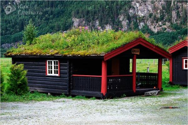Как сделать газон на крыше - особенности и монтаж