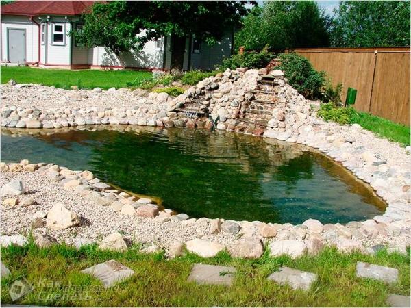 Как почистить пруд своими руками на даче - от ила, от водорослей