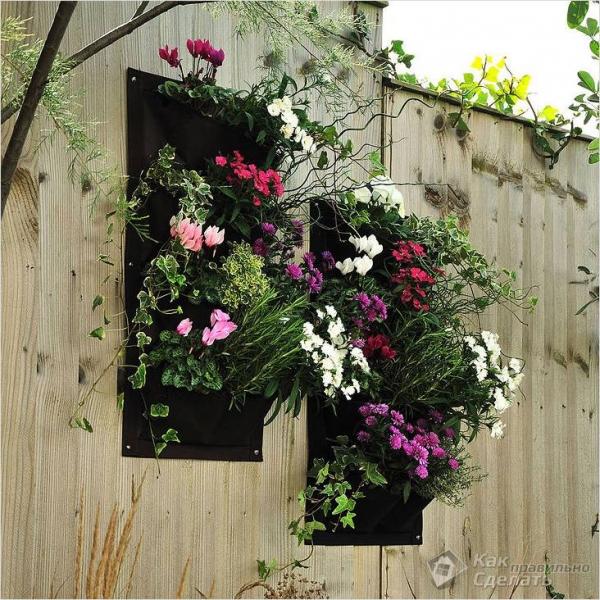 Как сделать вертикальный сад - создание вертикального сада (+фото)